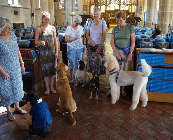 Guests at St Peter's Pet Service